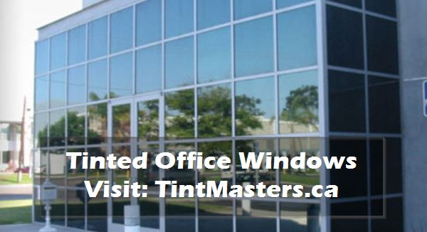 Tinted Office Windows by TintMasters.CA